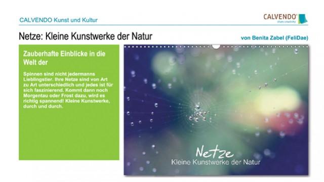 Netze: Kleine Kunstwerke der Natur - Kalender