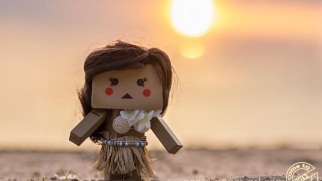 Aloha, Lilly