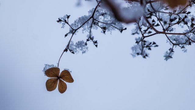 Winter - Teil 2