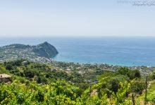 La Isola Verde - Ischia - Teil 8